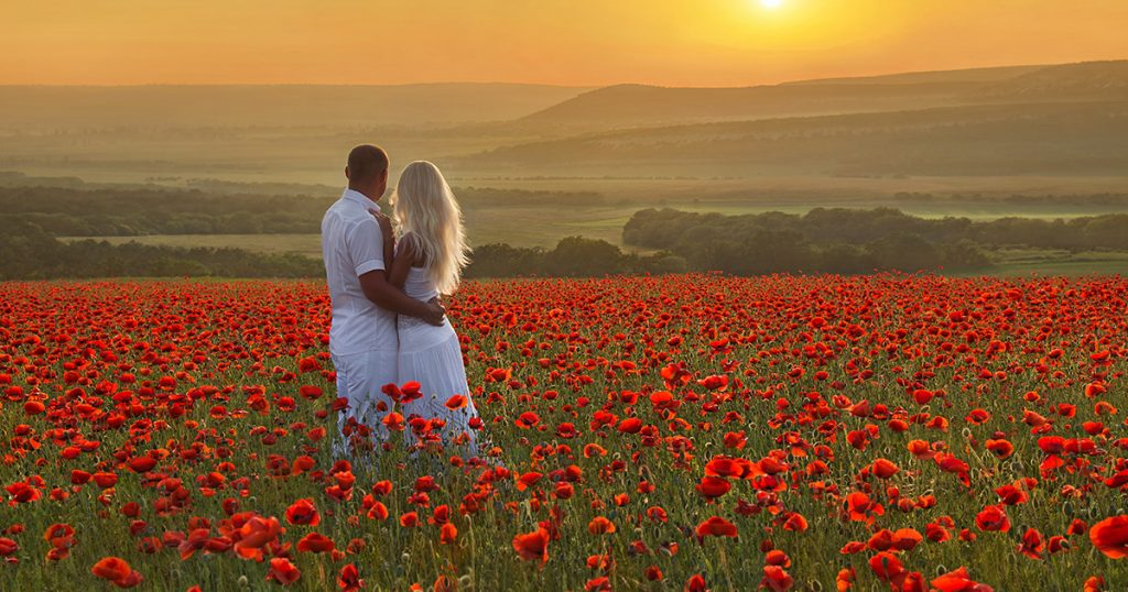coquelicot mariage
